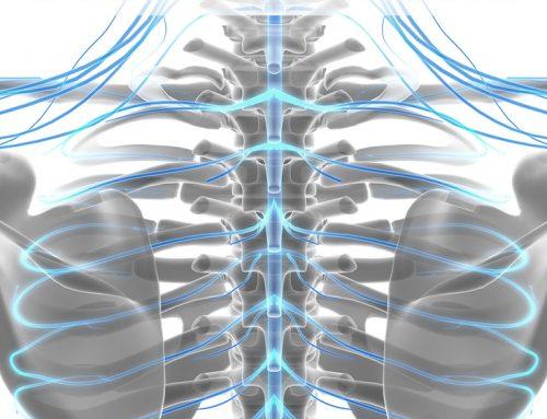 A Link Between Vertigo and Osteoporosis