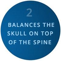 balances the skull