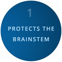 protects the brainsteam