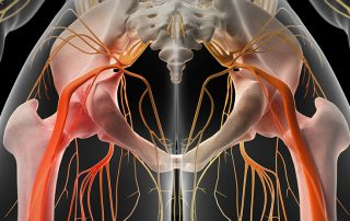 Spine and Sciatica: The search for Treatment