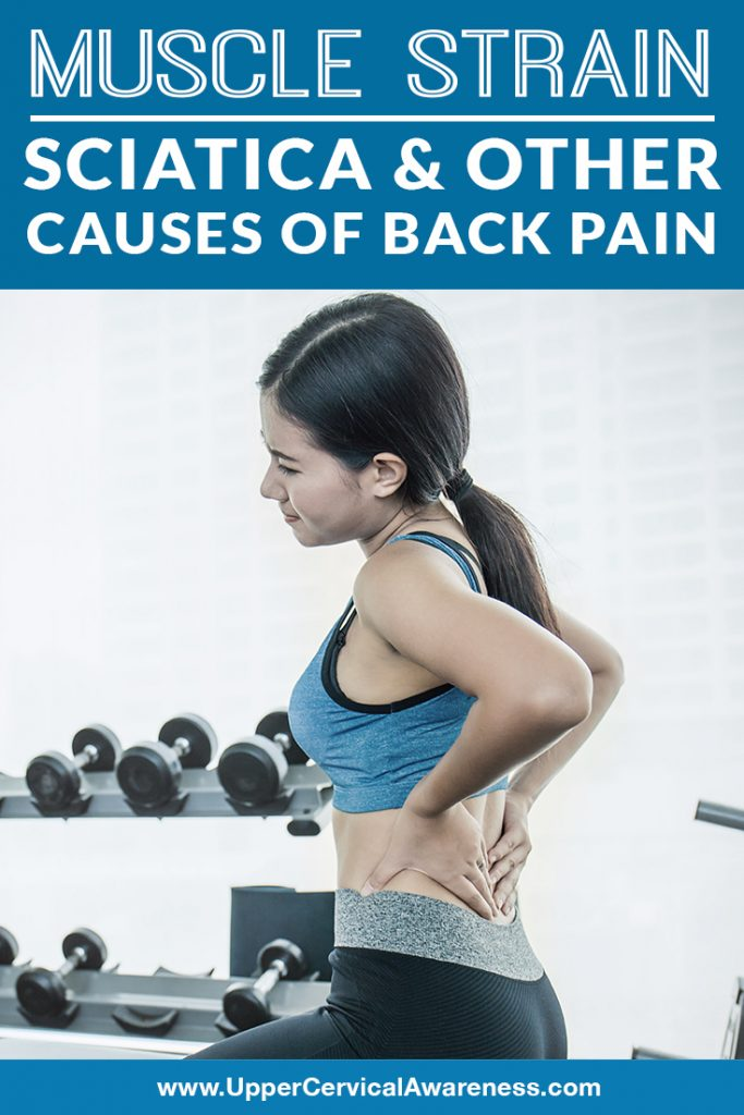 muscle-strain-sciatica-other-causes-of-back-pain