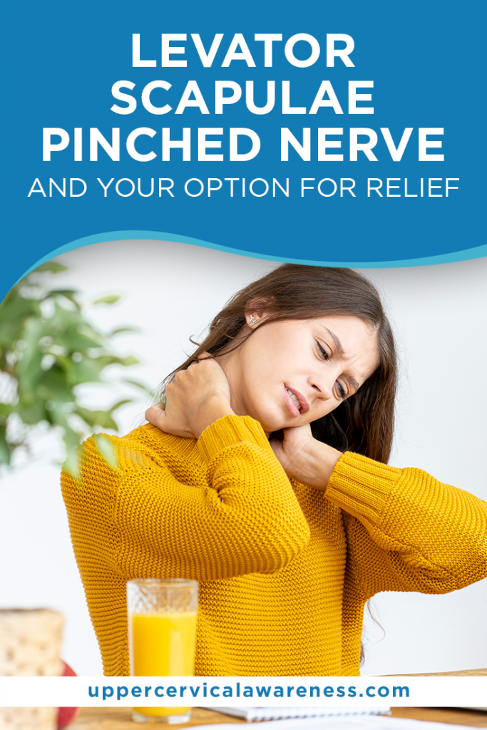 Levator Scapulae Pinched Nerve And Your Options for Relief