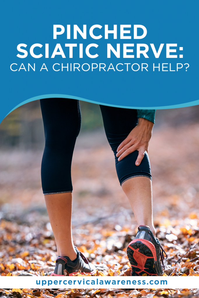 pinched sciatic nerve, Can a chiropractor fix a pinched nerve